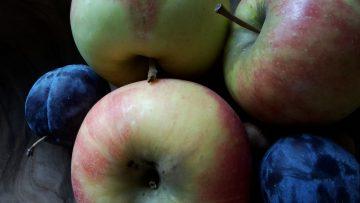Apfelzeit - eine appetitanregendes Motiv