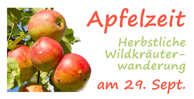 Apfelzeit - Äpfel am Baum - Wanderhinweis